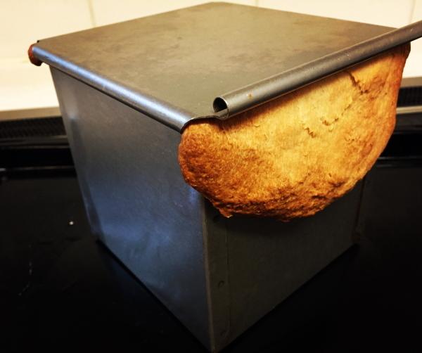 bread-1-kaku.jpg