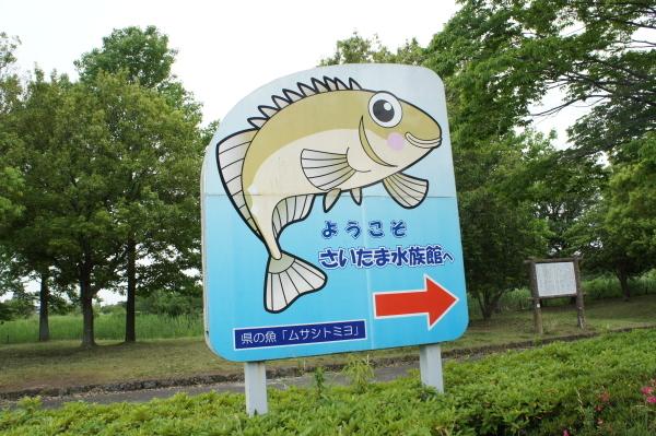 sai-sui-0601-1.jpg